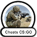 Cheat-codes CS:GO