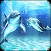 Download Dolphins Live Wallpaper APK
